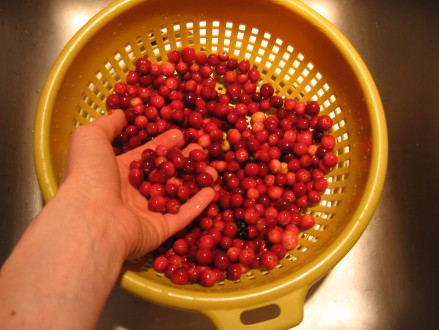 Washing the cranberries
